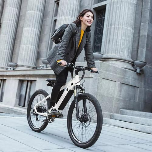 10-2-urban electric bike